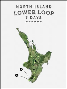 7day-lower-north-island-loop-mini